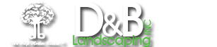 D&B Landscaping